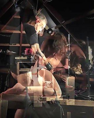 Bondage newbie porn closeup while hogtied pussy masturbated