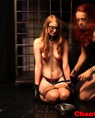 lezdom whore being frog-tied