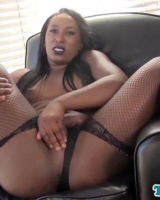 Bootylicious black shemale jerking dong